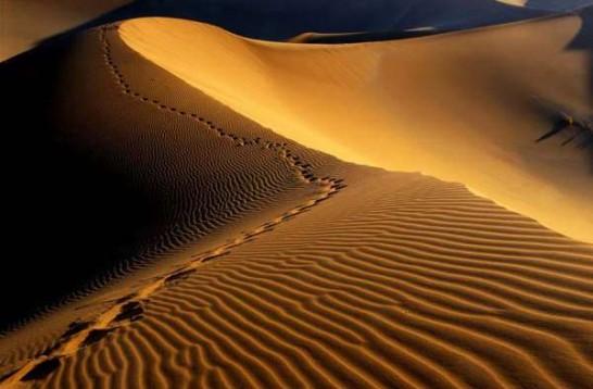 desierto11